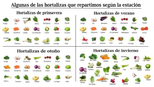 graficos hortalizas.png